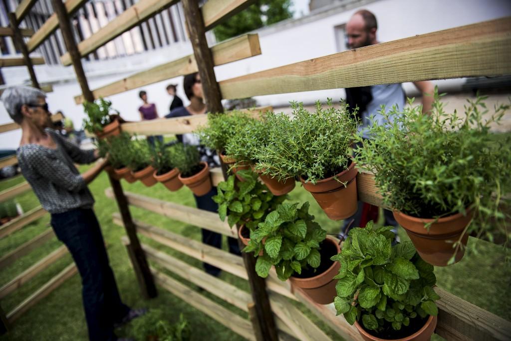 Lisboa. À volta do Campo Pequeno, as hortas estão a nascer de mãos dadas com a arte